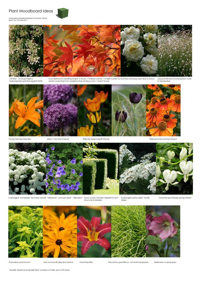 Greencube garden and landscape design uk last planting for Garden design internship