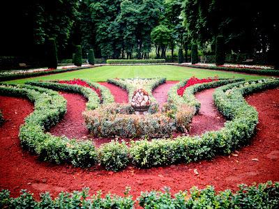 flower bed,