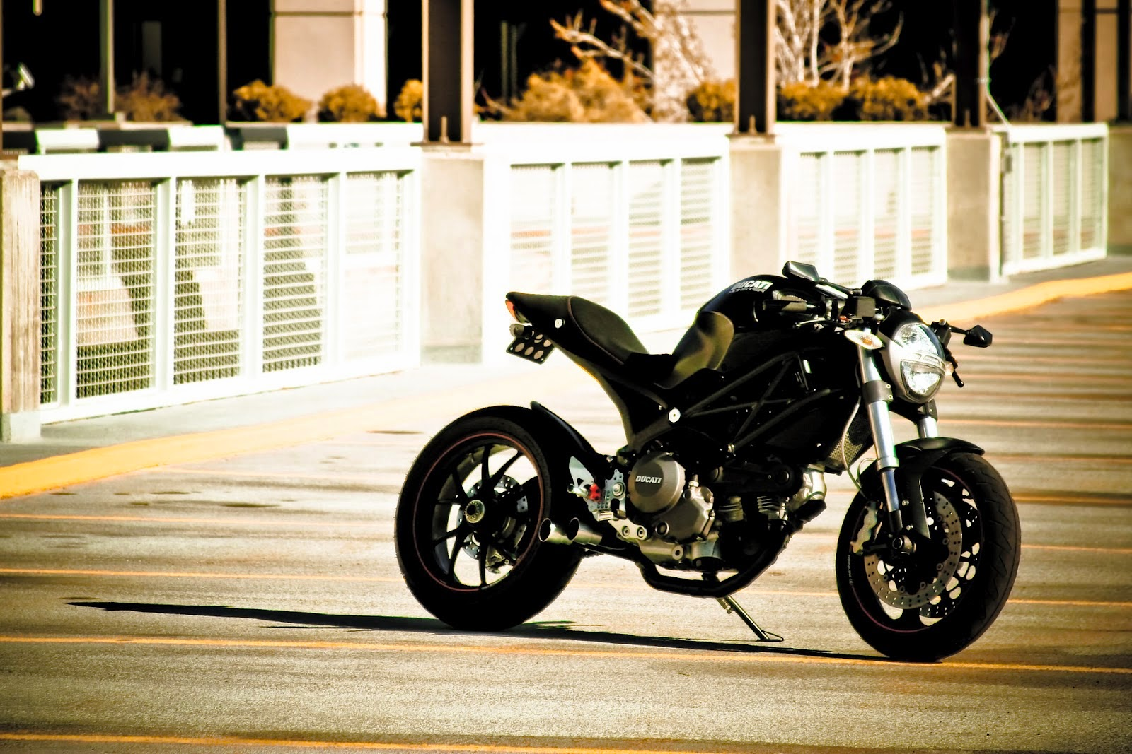 Ducati Monster Cafe Racer Conversion