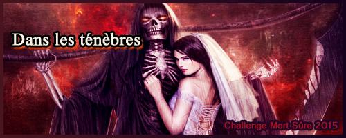 http://www.mort-sure.com/t8464-2015-challenge-n7-dans-les-tenebres