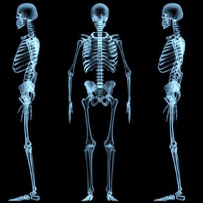 Configuración de los huesos del cuerpo humano