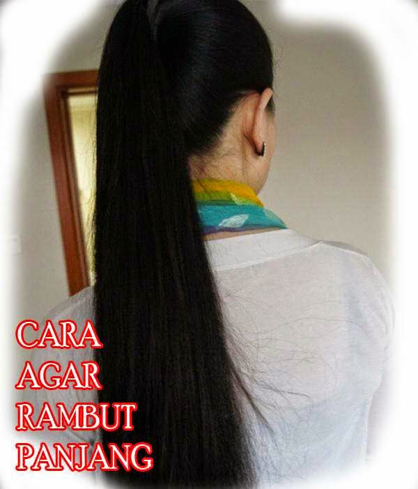 Cara Membuat Rambut Cepat Panjang Dan Hitam