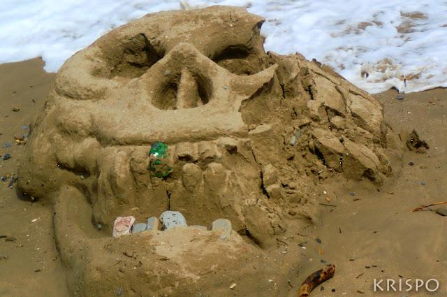 calavera de arena en playa