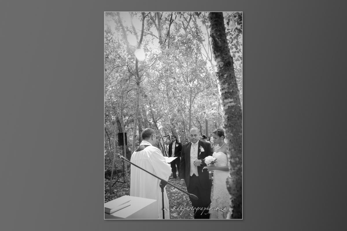 DK Photography DVD+slideshow-184 Cleo & Heinrich's Wedding in D'Aria, Durbanville  Cape Town Wedding photographer