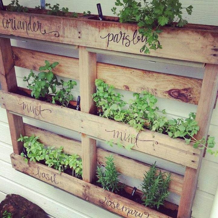 25 cute & simple herb garden ideas | VINTAGE ROMANCE STYLE