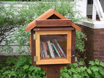 Outdoor library box