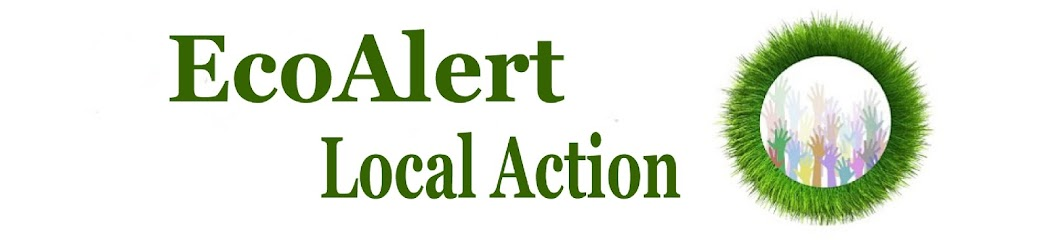 EcoAlert - Local Action