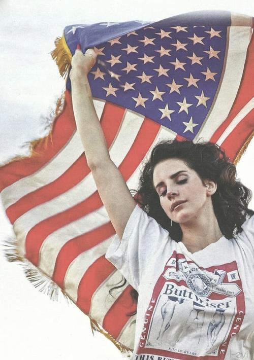 Lana Del Rey Facebook Cover Flag fox and gypsy: ...
