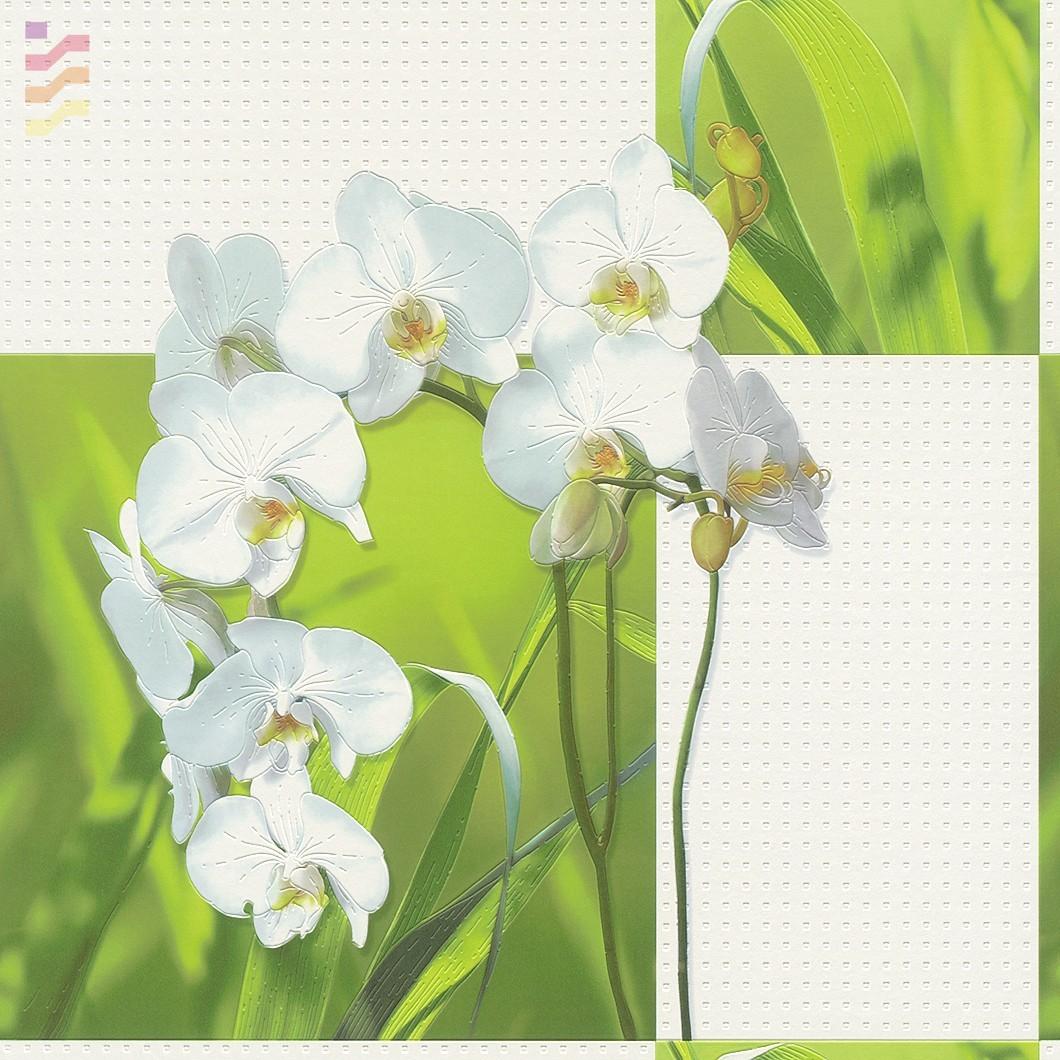 tapeta w orchideę