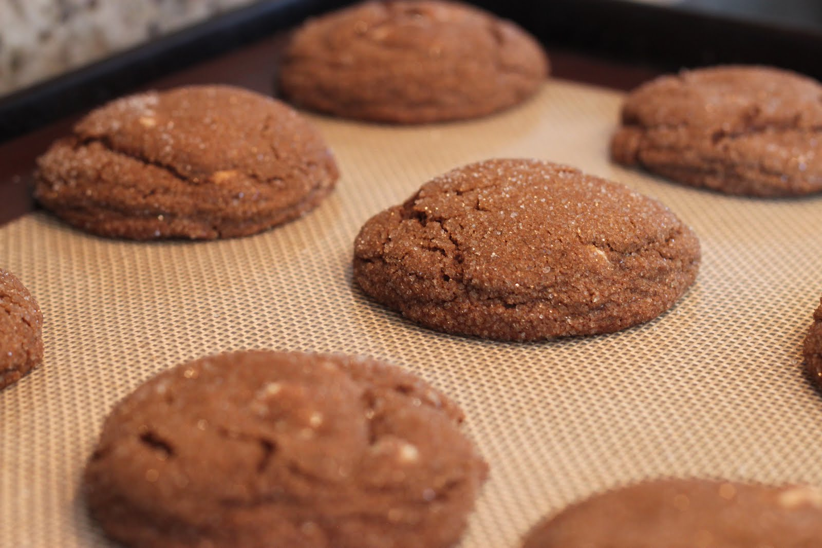 Soft Gingersnap Cookies With White Chocolate Chunks Recipes ...