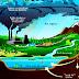 Asit Yağmuru nedir nasıl oluşur özellikleri