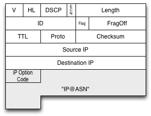 IP Option field appended to frame
