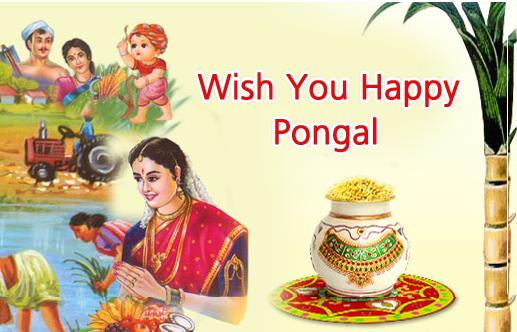 Pongal the Festiva