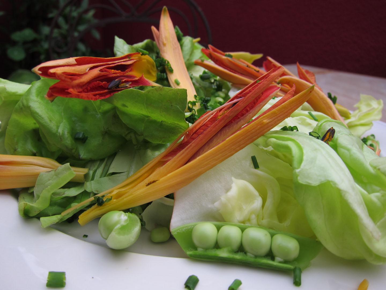http://4.bp.blogspot.com/-W3BS4GBHI-0/Tf6XUT7cnyI/AAAAAAAAnBs/GPh9KPiDNU4/s1600/day+lily+salad.jpg