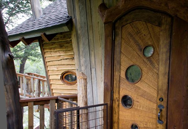 Detalle del diseño iregular de la casa sobre el arbol