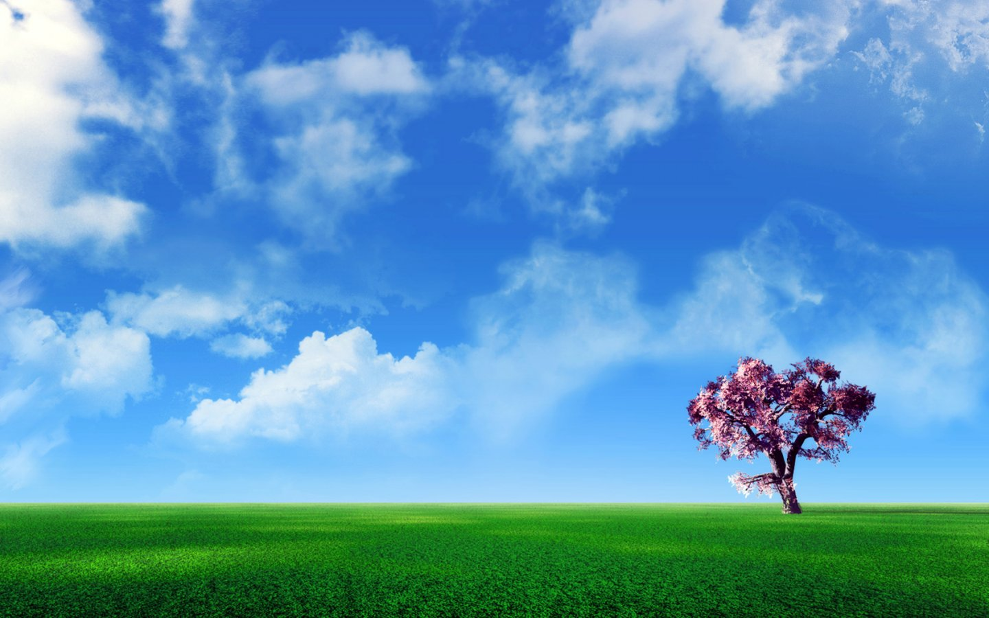 http://4.bp.blogspot.com/-W3XnfWQDkOc/TwPY2ZtMjHI/AAAAAAAAEtE/6-eFubJ3FBk/s1600/Dream-world-2-wallpaper_1440x900.jpg