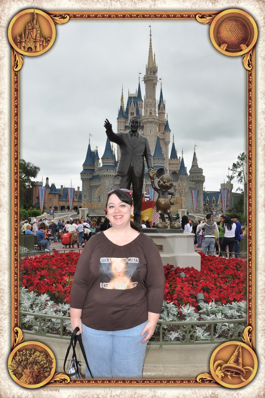 how to get watermark off disney photopass