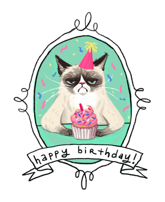 Cat angry Happy Birthday