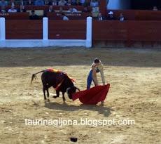 TOROS EN OVIEDO 2005