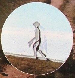 alien transparente taiwan