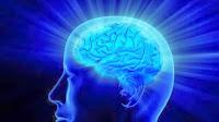 Alzheimer's Decline Rate | Alzheimer's Front Row