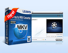 Leawo Blu-ray to MKV Converte