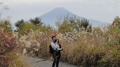 http://border-polly.blogspot.jp/2011/11/blog-post_10.html