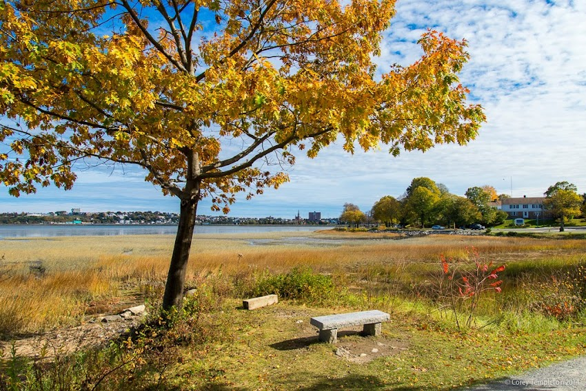 Portland, Maine Back Cove Trail and Baxter Boulevard in Autumn or Fall October 2014 Photo by Corey Templeton