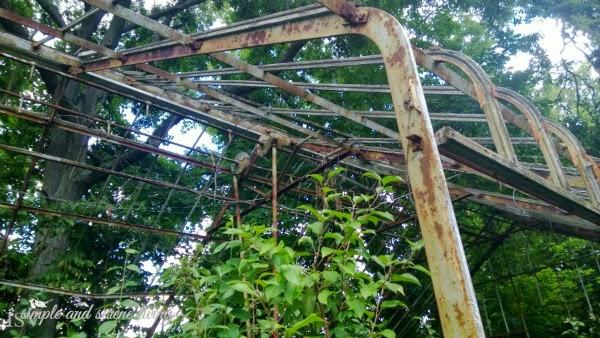 historic greenhouse rustic