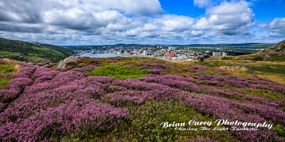 St John's Newfoundland photography by Brian Carey