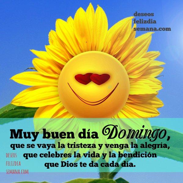 Bonitas frases de feliz domingo para saludar amigos, mensajes cristianos del domingo cortos y alegres por Mery Bracho. Deseos feliz día de semana.