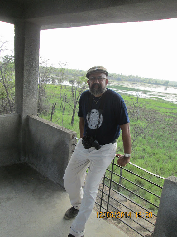 "On the Watch -tower facing ""Erai Dam""  swamp in ""Buffer Zone"" of Moharli Range."