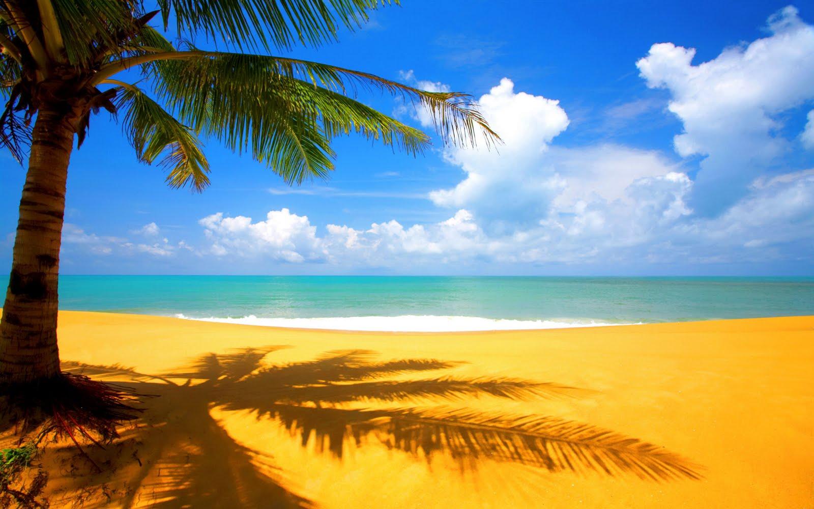 http://4.bp.blogspot.com/-W5JHS4J_7Gk/TeogdMSE_BI/AAAAAAAAAP4/Jlo1S9rKv0o/s1600/At_The_Beach_Hd_Wallpaper_1920X1200.jpg