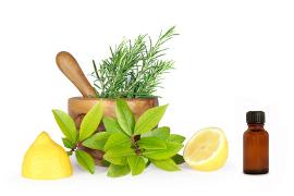Informatii despre modul de actiune al remediilor naturale
