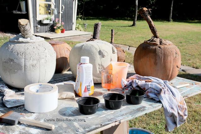 IMG_7979 Rit dye cement pumpkins