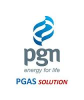 PT PGAS Solution