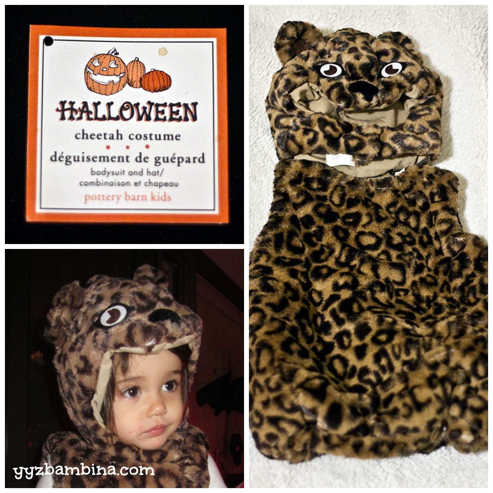 yyz bambina: a spotted halloween with pottery barn kids