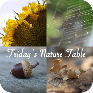 Friday&#39;s Nature Table