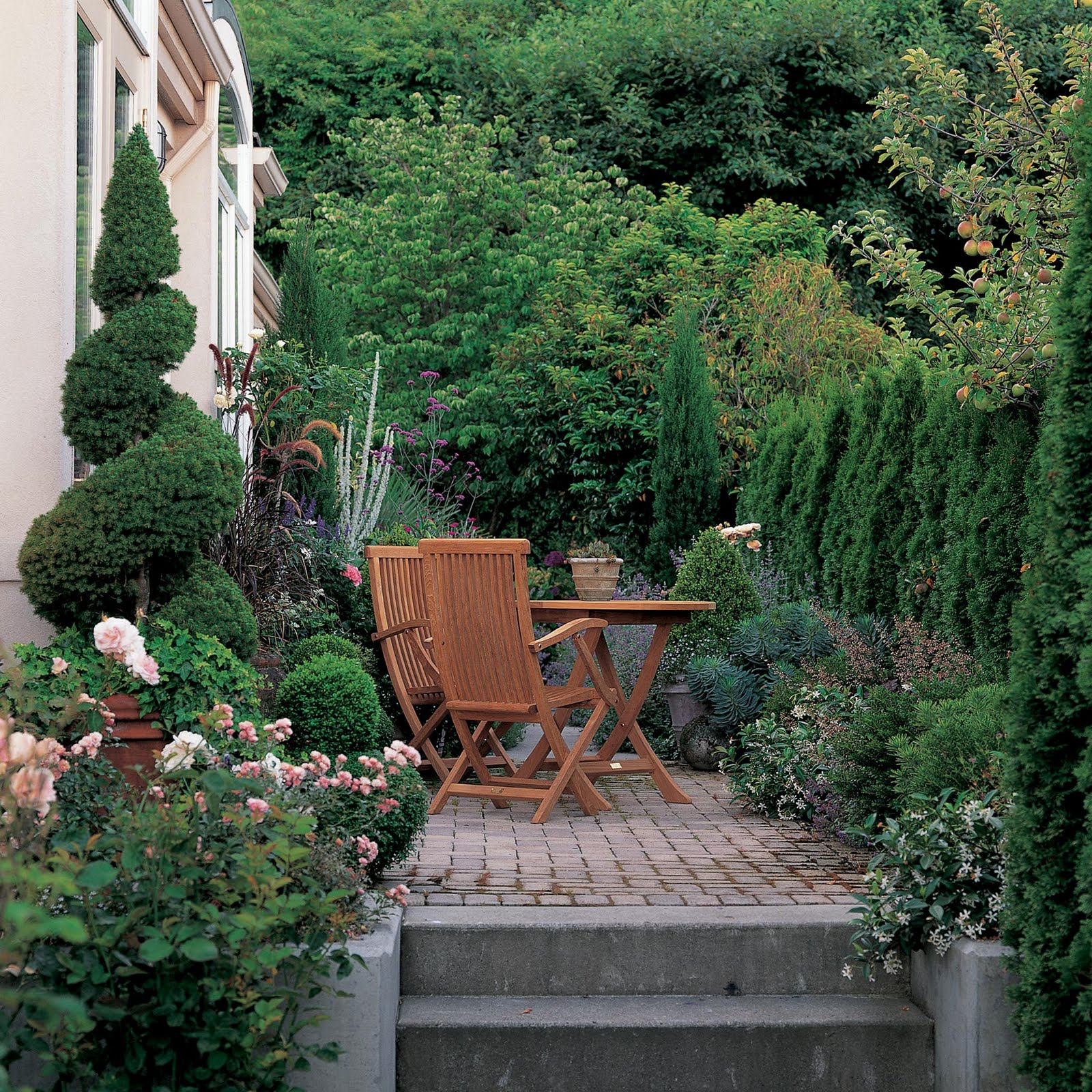 Danger garden landscaping for privacy innovative ways to for Backyard privacy landscaping trees