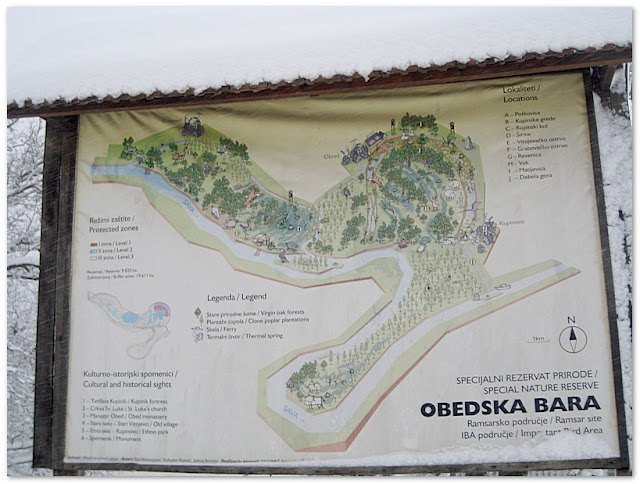 The nature reserve Obedska bara