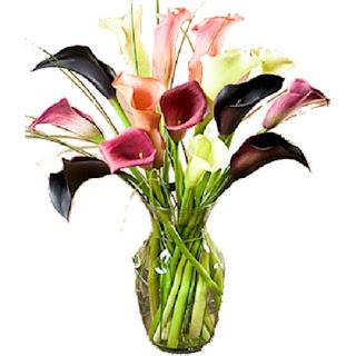 Como Alargar el Tiempo de Vida de las Flores Cortadas