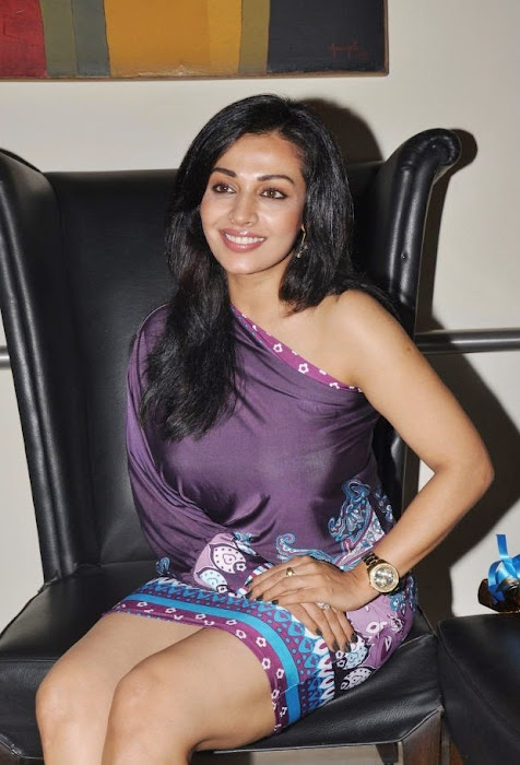 Asha Saini High Quality Spicy Photos 3