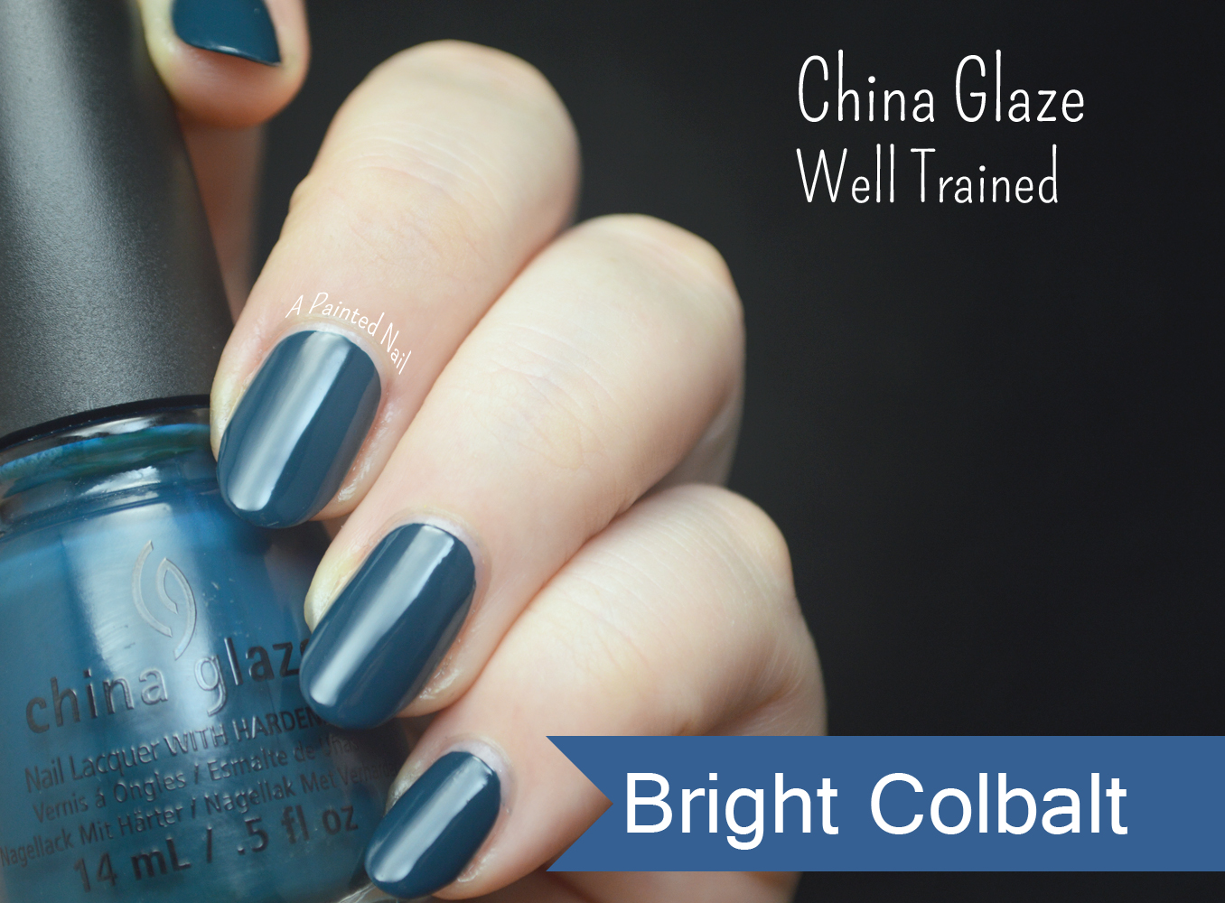 A Painted Nail: China Glaze Well Trained Fall/Winter 2014 Color Trends