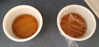 fruit fly traps with and without plastic wrap