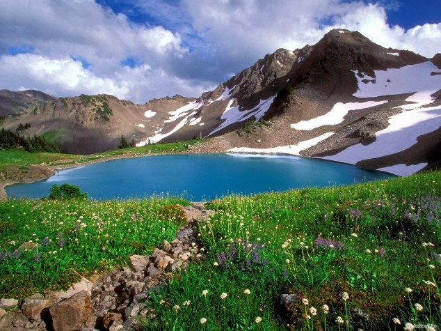 Olympic National Park is located in the U.S. state of Washington