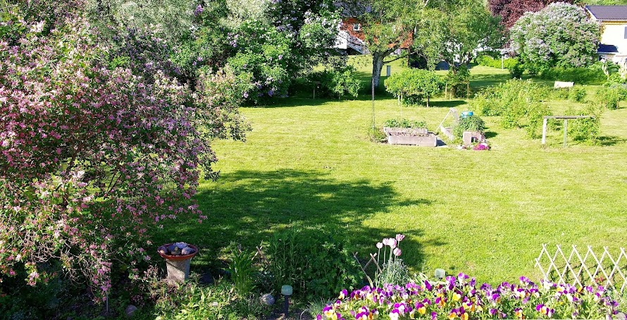 Min trädgård