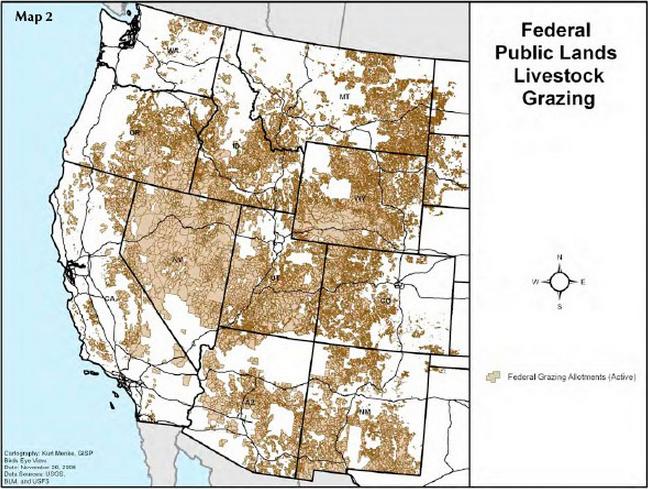 public grazing lands essay
