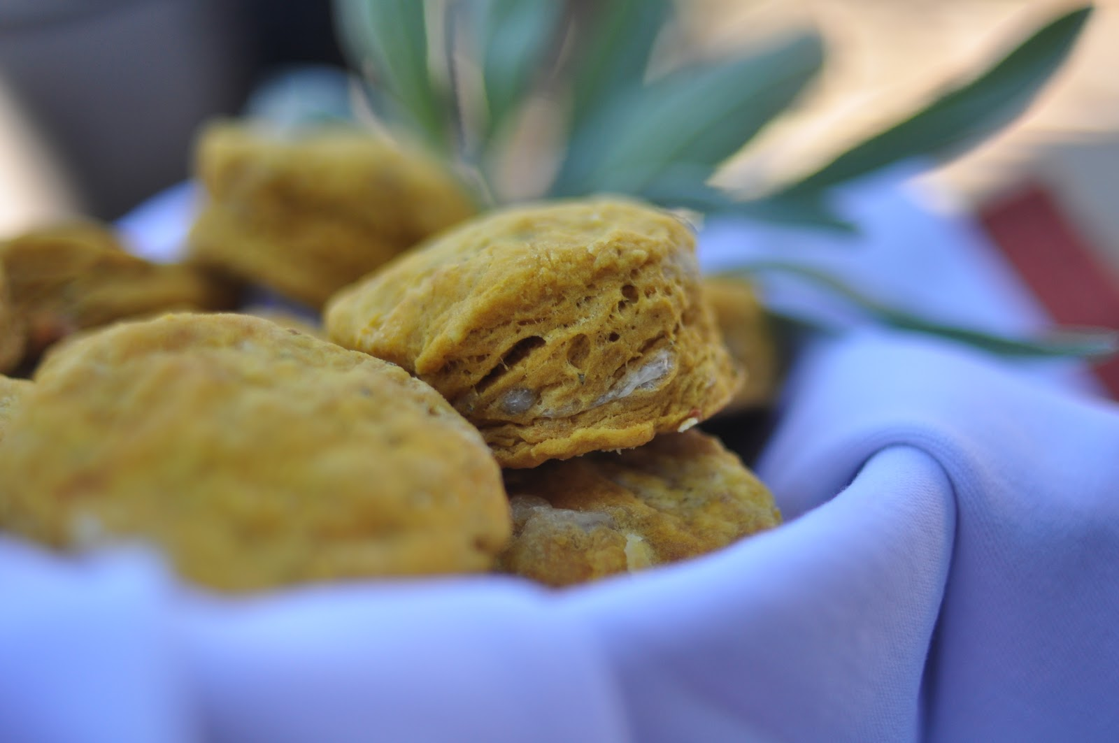 Bite Me: Pumpkin, Cheddar and Sage Biscuits