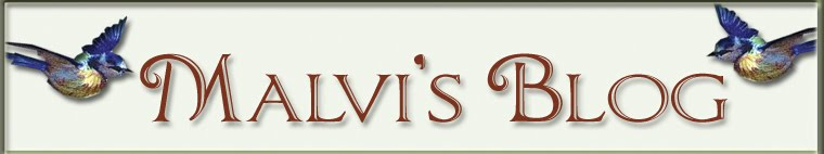 Malvi's blog