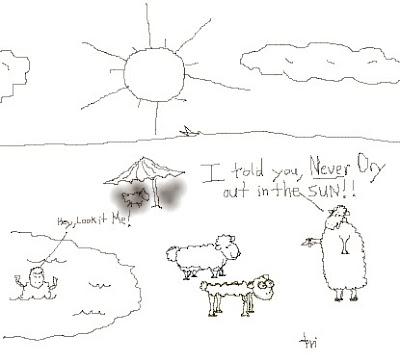 shrunken sheep